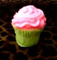 CUPCAKE Candles 4 Watermelon