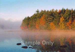 """Misty Point"" - 5x7 - Original Color Photo - signed"