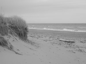 """Sand and Surf"" - 8x10 - Original Black and White Photo - signed"