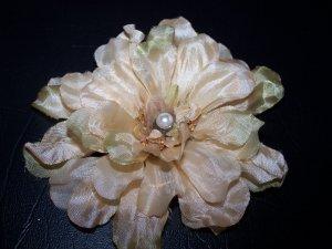 Autumn Flower 3