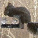 2-PACK OF BRAND NEW SQUIRREL PROOF BIRD FEEDERS GREAT GIFTS FOR MOM!
