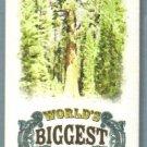 2010 Topps Allen & Ginter Baseball Mini Worlds Biggest Tree (Sequoia) #WB4 (BV $25)