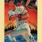 1995 Fleer Baseball Pro-Visions #5 Tim Salmon - California Angels