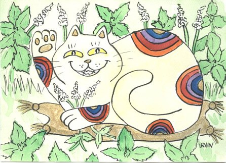 Lucky Calico Rainbow Colored Neko Cat in the Catnip ACEO Print