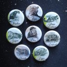"Edwardian Big Cat Illustrations 1.25"" Magnets Set of 8"