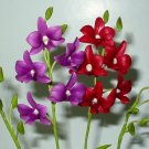 Handmade Dendrobium Orchids DeepViolet and DarkRed Flowers for Home Decor