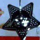 Star Tea or Herb Infuser by Farberware