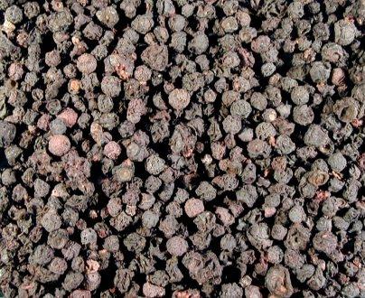 Bilberry fruit powder 1 Pound