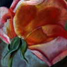 Rosebud Pastel Drawing by Donnalda Smolens