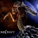 Stacraft Zerg Tutorial Services BEGINNER