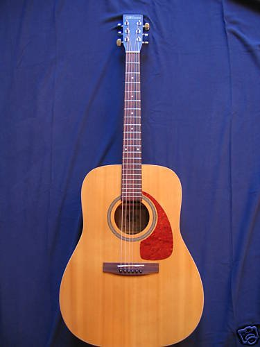 Norman B20 Acoustic
