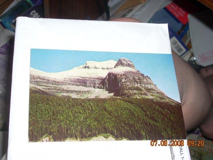 glacier going to the sun road montana d g enterprises