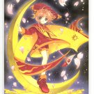 Card Captor Sakura double sided letter board (2)