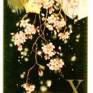 X Shitajiki (04, 15th Anniversary) cherryblossom