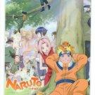 Naruto shitajiki 01-Y