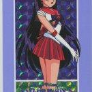 Sailor Moon Hero 3, 387 pz