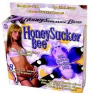 Honeysucker Bee