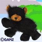 Black Bear Webkinz