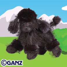 Black Poodle Webkinz