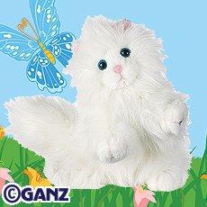 Persian Cat Webkinz