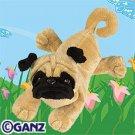 Pug Webkinz