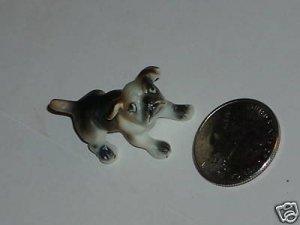 Tiny little dog glass
