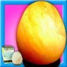 EGG SHAPE Salt Lamp Vital Energy Vitamins Of The Air