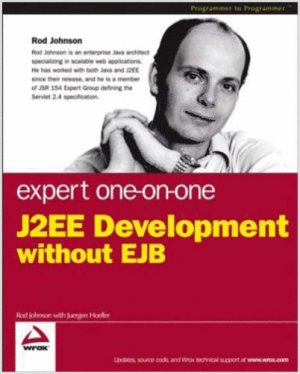 Expert One-on-One J2EE Development without EJB (Paperback)