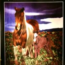 Soft Cozy Blanket - Horse & Colt