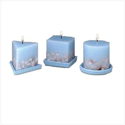 Designer Seashell Candle Set
