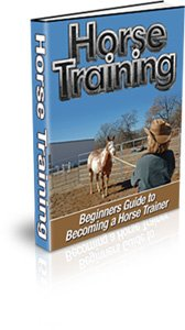 Beginner�s Guide to Becoming a Horse Trainer!