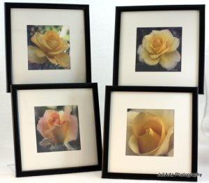 Rose Art Prints Set of 4