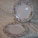 Laura Ashley GRAPEFIELDS (2) Salad Plates