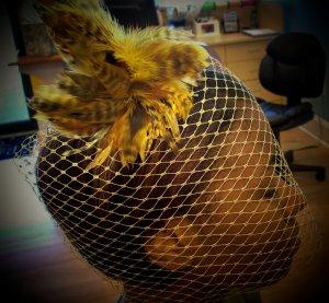 Golden Goddess Birdcage Veils