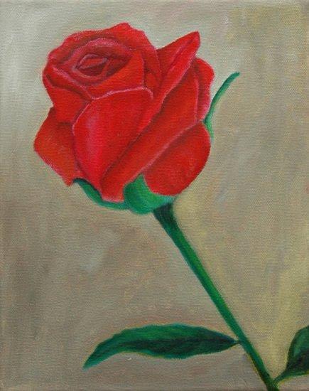 Original Single Red Rose Oil Painting 8X10