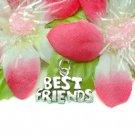 925 STERLING SILVER BEST FRIENDS CHARM / PENDANT