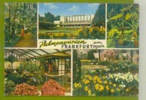 GERMANY FRANKFURT PALMENGARTEN POSTCARD VINTAGE CIRCA 1950