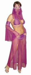 4 Piece Sheer Harem Girl Outfit with Coin Fringe Sleeves and Sequin Skirt