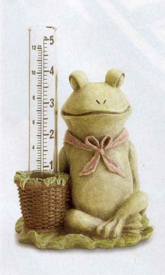 Frog Rain Guage