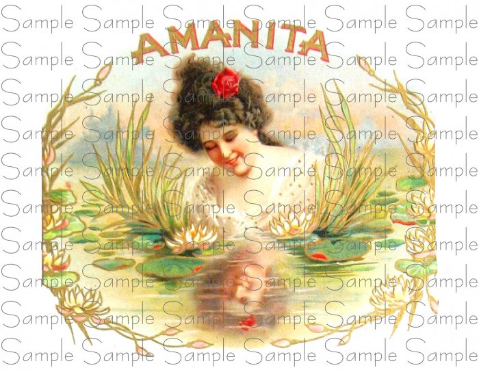 Vintage Amanita Cigar Box Art Printable Digital Ephemera Scrapbooking Altered Art