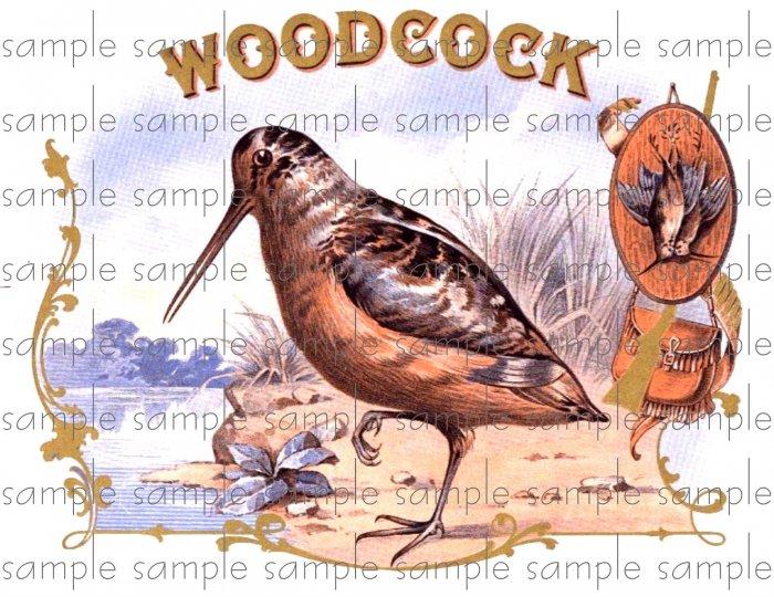 Woodcock Vintage Digital Cigar Box Art Ephemera Scrapbooking Altered Art Decoupage