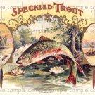 Speckled Trout Vintage Digital Cigar Box Art Ephemera Scrapbooking Altered Art Decoupage