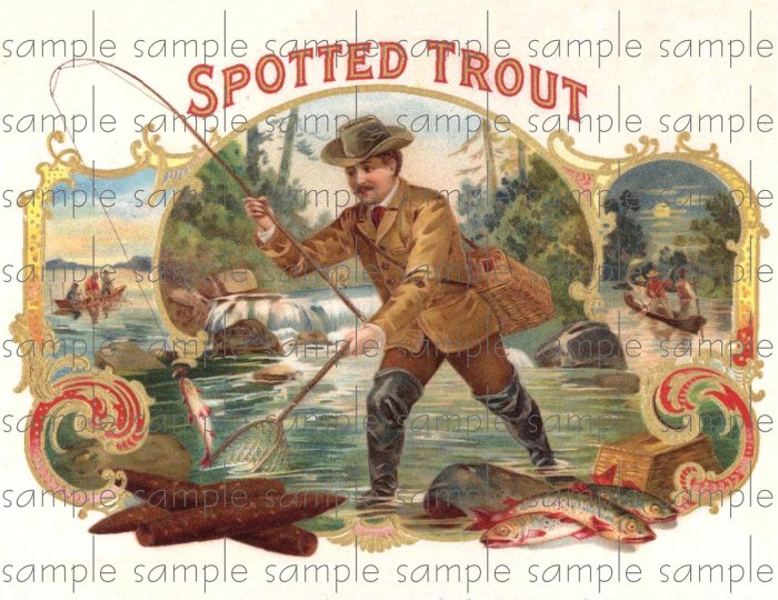Spotted Trout Vintage Digital Cigar Box Art Ephemera Scrapbooking Altered Art Decoupage