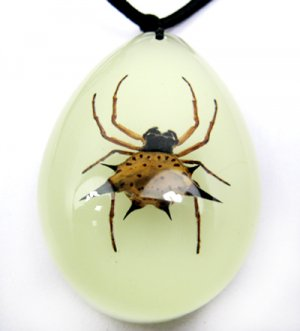 Real Insect Bug Luminous Amber Necklace Pendant Spider