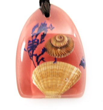 Amber Charm Real Seashell Necklace Pendant Multi-color NO.2