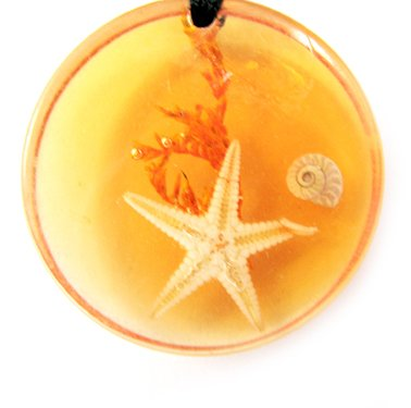 Round Amber Real Seashell Necklace Pendant Multi-color NO.12