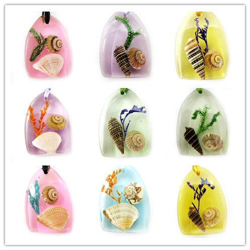 Wholesale Lot 5 Amber Real Seashell Necklace Pendant Multi-color