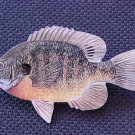BLUEGILL HAT PIN-HIGH QUAL-!!FREE SHP!! L@@K!!!