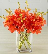 Sailing Sun Orchid Bouquet