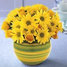 Sunburst® Bouquet